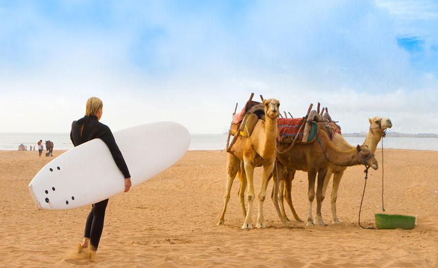 Essaouira Marokko Surferin Kamele