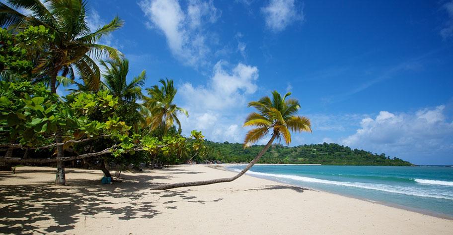 madagskar hochzeitsreise nosy be schöner strand mit sicher und palmen nicht kuoni