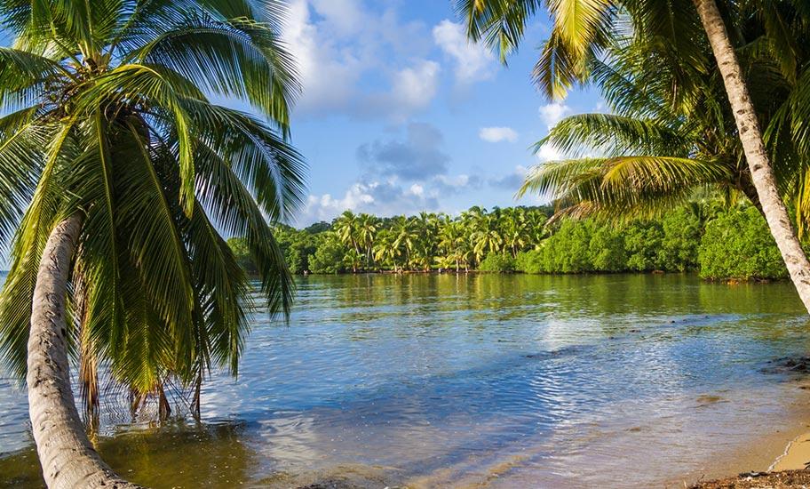 Madagaskar Tauchferien Strand Insel Saint Marie Palmen Paradies