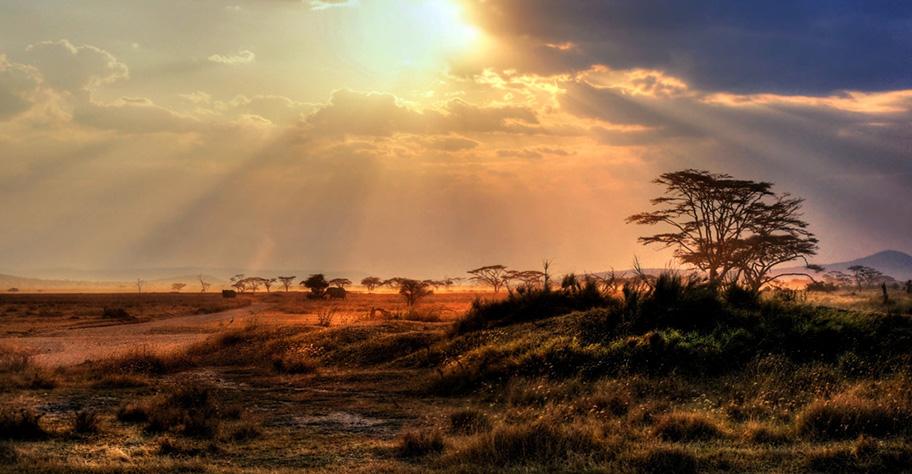 Namibia Landschaft Natur wunderschön Romantik