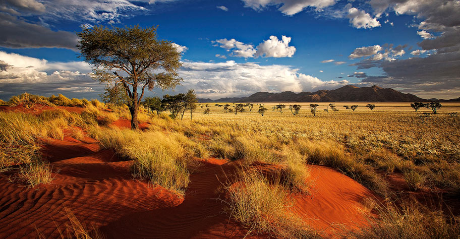 Namibia Safaris rote Dünen