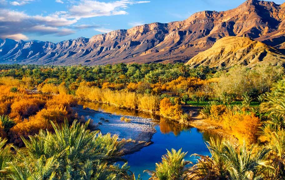 Oase Wüste Marokko