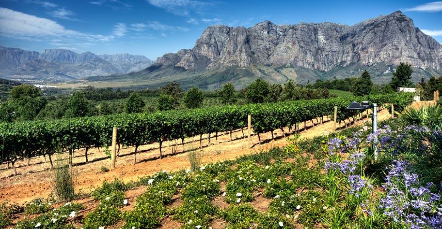 Wein-Reisen Südafrika Landschaften